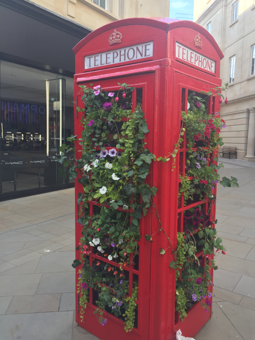 A red phone box with flowers growing out of it